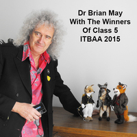 Brian May ITBAA2015 winners